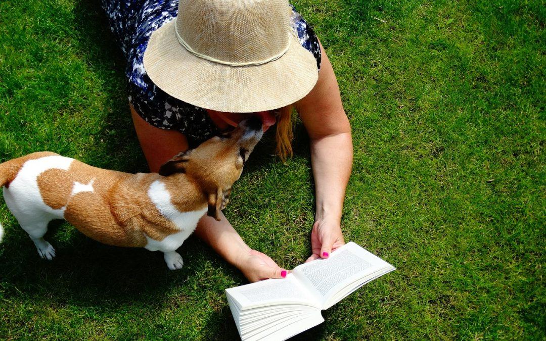 KnuGroup Pet Newsletter vol. 2