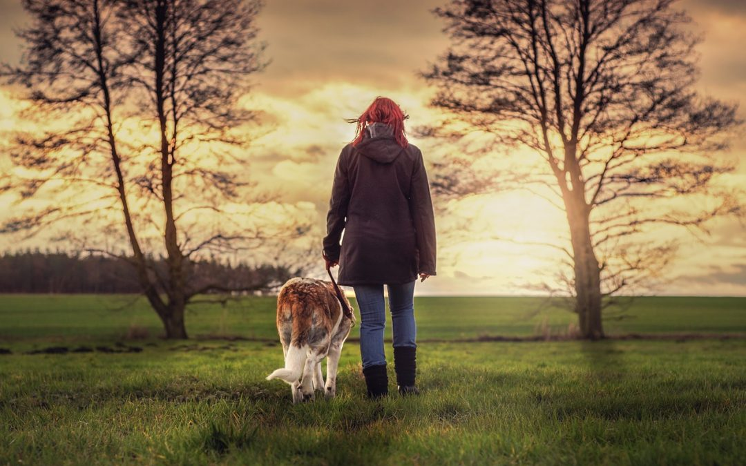 Science Explains the Unexpected Reasons Why Dogs Need to Be Walked